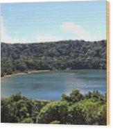 Escalonia Cloud Forest Trail Wood Print