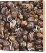 Escargot Wood Print