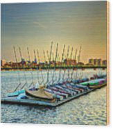 Esplanade Dock 023 Wood Print