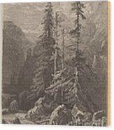 Essais De Gravure ? L'eau Forte Par Alexandre Calame, I, Pl. 21 Wood Print