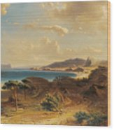 Estepona Beach With The View Of The Rock Of Gibraltar Wood Print