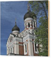 Estonia Church  Wood Print