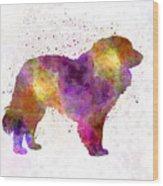 Estrela Mountain Dog In Watercolor Wood Print
