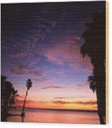 Estuary At San Jose Del Cabo Wood Print