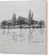 Etang Wood Print
