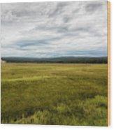 Eternal Yellowstone Wood Print