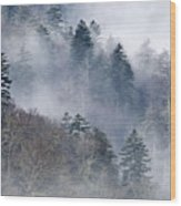 Ethereal Forest - D008248 Wood Print