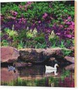 Ethreal Beauty At The Azalea Pond Wood Print