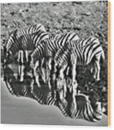 Etosha Pan Reflections Wood Print