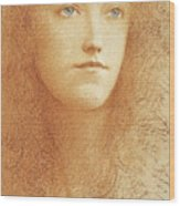 Etude Anglaise Wood Print