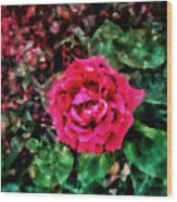 Etude  With       Rose -oil Wood Print