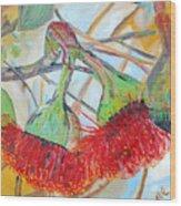 Eucalyptus Flowers Wood Print