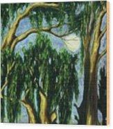 Eucalyptus Moon Wood Print