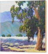 Eucalyptus On The Bluffs Wood Print