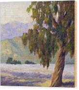 Eucalyptus Sentinel Wood Print