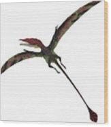 Eudimorphodon On White Wood Print