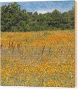 Eufaula Meadow Wood Print