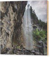 Eugenia Falls Wood Print