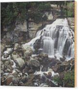 Ingliss Falls - Ontario Wood Print