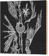 Euphoric Wood Print