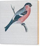 Eurasian Bullfinch Artwork Wood Print