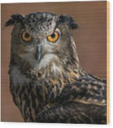 Eurasian Eagle Owl Iv Wood Print