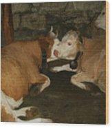 European Cows Wood Print