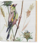 European Goldfinch In The Field Wood Print