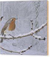 European Robin On Snowy Branch Wood Print