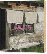 European Windowsill Wood Print