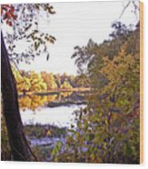 Eve On The Lake Wood Print