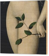 Eve Wood Print by The Elder Lucas Cranach