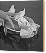 Even Tulips Are Beautiful In Black And White Wood Print