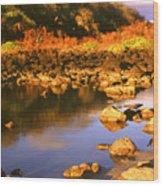 Evening At Ochoa Beach Wood Print
