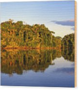 Evening By Garzacocha Lake Wood Print