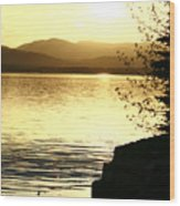Evening Charlotte Sunset Wood Print