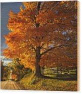 Evening Drive Wood Print
