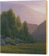 Evening Grace Wood Print