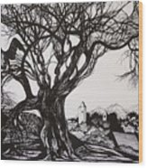 Evening In Midnapore Wood Print