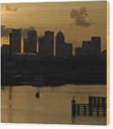 Evening In Tampa Wood Print