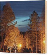 Evening In The Neighborhood Wood Print