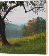 Evening In The Pasture Wood Print