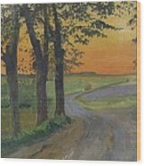 Evening In The Plain Wood Print