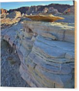 Evening In Valley Of Fire State Park Wood Print