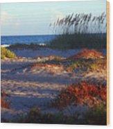 Evening Light At The Beach Wood Print