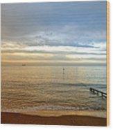 Evening Light On Shanklin Beach Wood Print