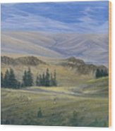 Evening Near Kamloops Wood Print