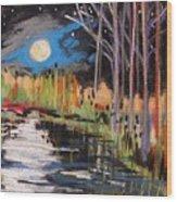 Evening Near The Pond Wood Print by John Williams