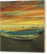 Evening On The Beach Wood Print