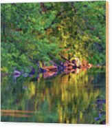 Evening On The Humber River - Paint Wood Print